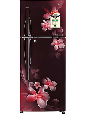 LG 260 L Frost Free Double Door 4 Star Refrigerator GL-T292RSPN