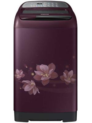 Samsung 6.5 kg Fully Automatic Top Load Washing Machine (WA65M4020HP/TL)