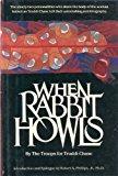 When Rabbit Howls: 2
