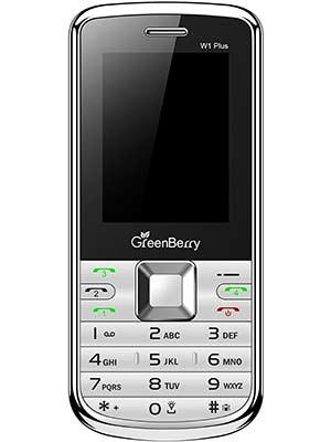 GreenBerry W1
